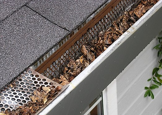 gutter-guard-leaves-clean